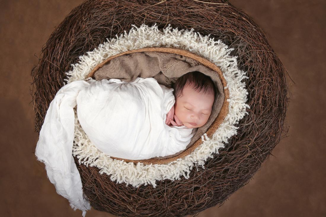 """Annandale Virginia Newborn Photographer"""